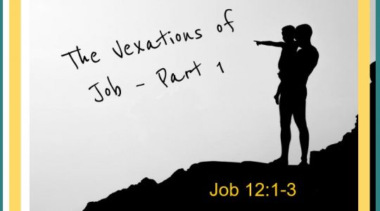 The Vexations of Job - Part I Job  12:1-3