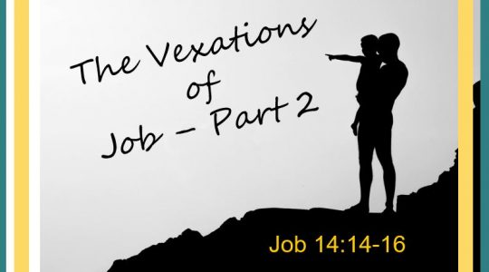 The Vexations of Job - Part 2; Job 14:14-16