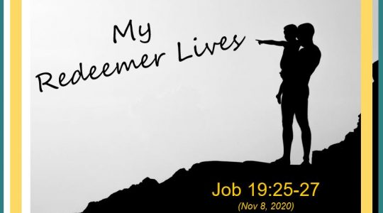 My Redeemer Lives! Job 19:25-27
