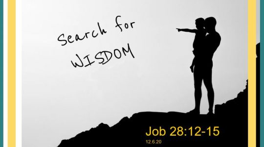 Search for Wisdom - Job 28:12-15