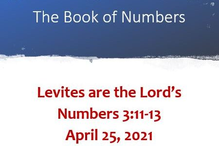 Levites are the Lord's: Numbers 3:11-13