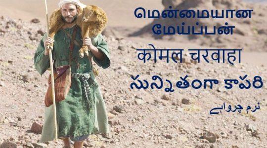 A Gentle Shepherd - Luke 15:1-7