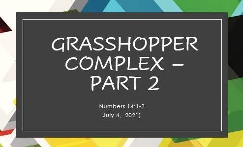 Grasshopper Syndrome - Part 2; Numbers 14:1-3