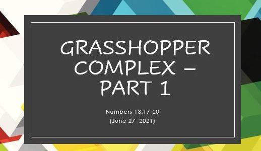 Grasshopper Complex Part 1 - Numbers 13:17-20